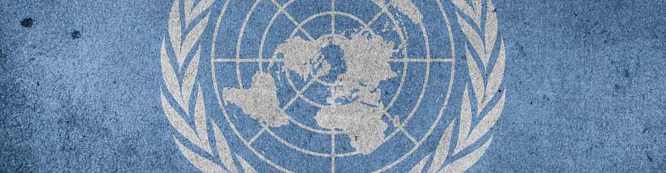 КОНВЕНЦИЯ ООН 19 мая 1956 г. О ДОГОВОРЕ МЕЖДУНАРОДНОЙ ПЕРЕВОЗКИ ГРУЗОВ (КДПГ) 2